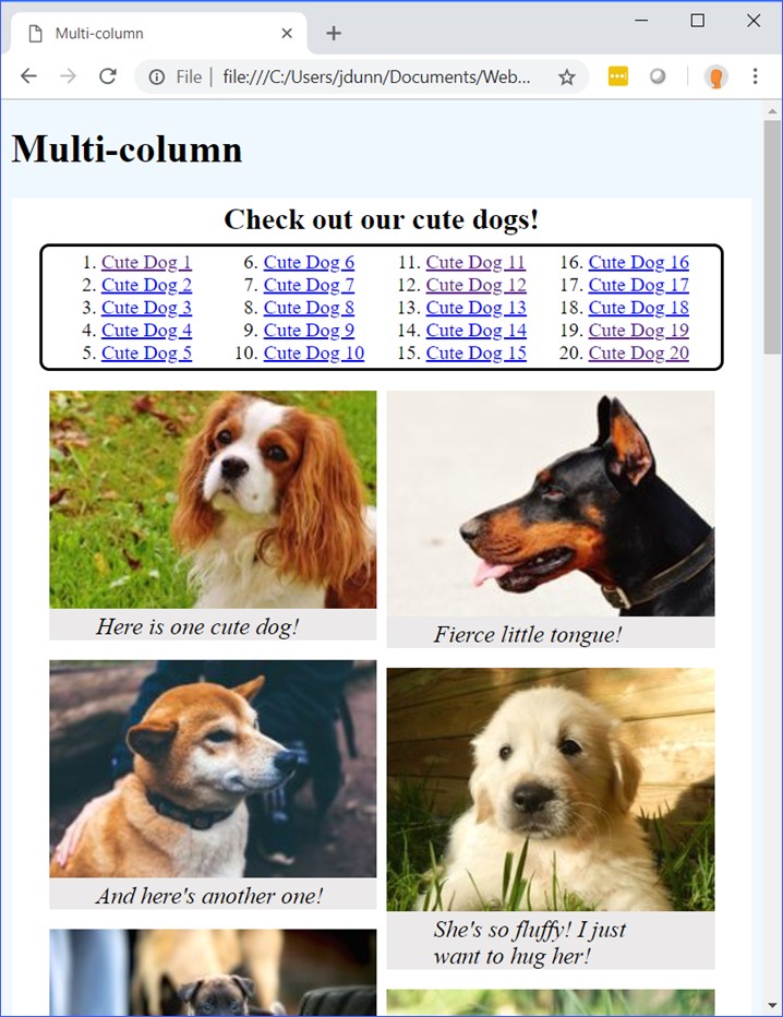 Multi-column Demo