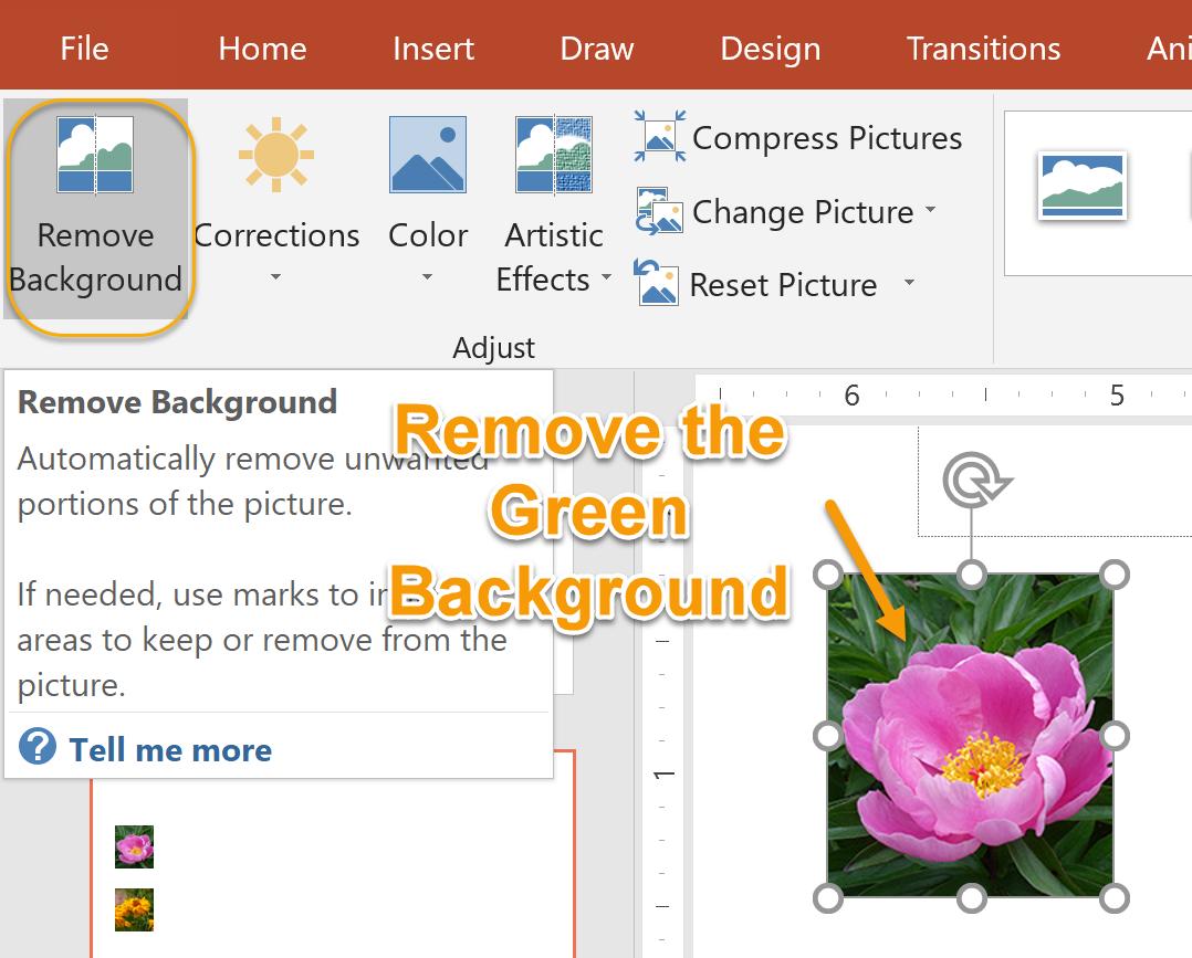 Remove Background Command