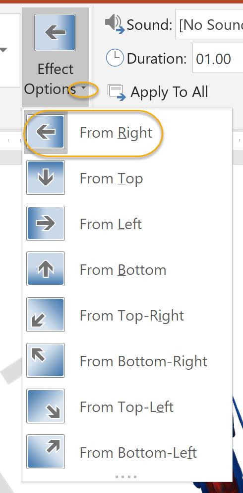Transition Option