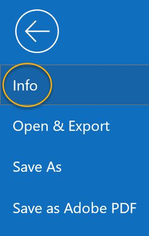Info Option